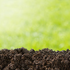 Professional-Lawn-Systems---Soil